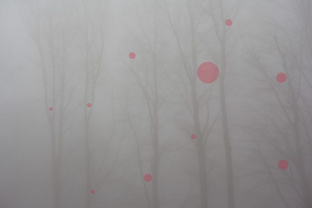 Cotton Candy di Marta Viola